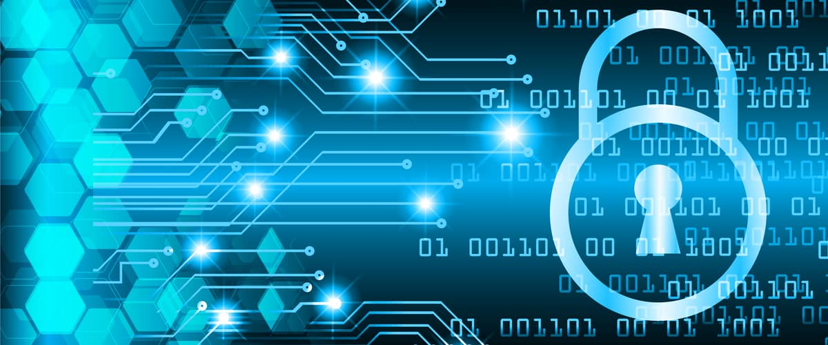 Top 5 Career Paths in Cyber Security