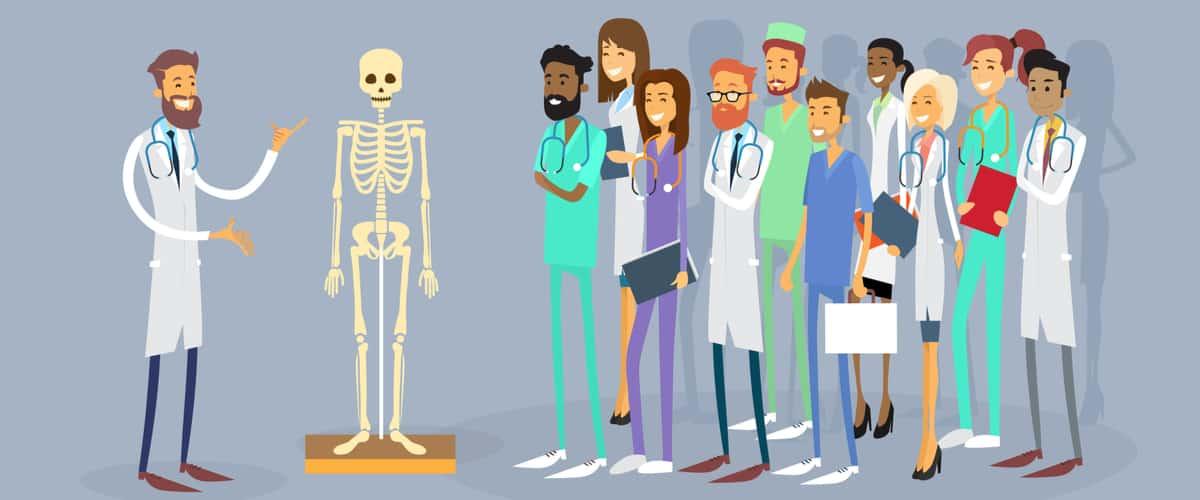 Most Rewarding Healthcare Internships for Undergraduates